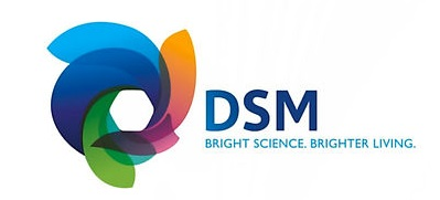 DSM Services USA Inc.