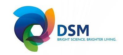DSM Services USA Inc.